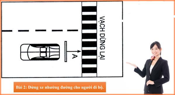 Dừng xe nhường đường cho người đi bộ